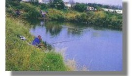 Highfield Fishing - Beautiful and full stocked fishing lake