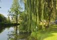River Arrow, Eardisland