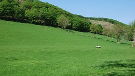 Farmland near Brynteg farm - geograph.org.uk (© Nigel Brown [CC BY-SA 2.0 (http://creativecommons.org/licenses/by-sa/2.0)], via Wikimedia Commons (original photo: https://commons.wikimedia.org/wiki/File:Farmland_near_Brynteg_farm_-_geograph.org.uk_-_800089.jpg))