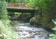 Eden Valley Stream