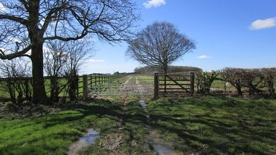 Gate on Garton Balk  (© © Copyright Jonathan Thacker (https://www.geograph.org.uk/profile/46229) and licensed for reuse (https://www.geograph.org.uk/reuse.php?id=5727921) under this Creative Commons Licence (https://creativecommons.org/licenses/by-sa/2.0/).)