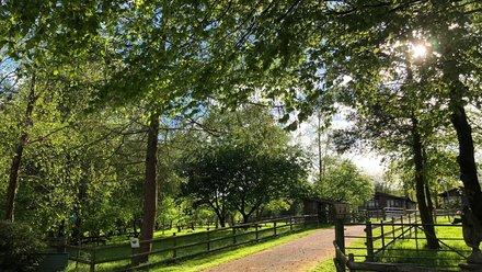 Holidays in Wales - Warren Parc