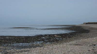 Cardigan Bay shoreline at Llanon (© © Copyright Nigel Brown (http://www.geograph.org.uk/profile/15376) and licensed for reuse (http://www.geograph.org.uk/reuse.php?id=1793551) under this Creative Commons Licence (https://creativecommons.org/licenses/by-sa/2.0/).)