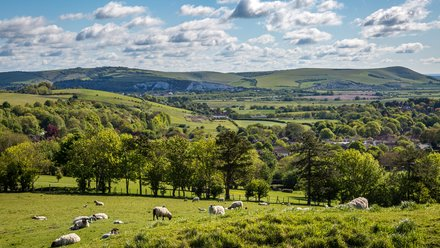 Residential park homes for sale in East Sussex - The South Downs