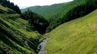 Lady Clough (Snake Pass) in Derbyshire  (© © Copyright Andrew Loughran (https://www.geograph.org.uk/profile/4344) and licensed for reuse (http://www.geograph.org.uk/reuse.php?id=189191) under this Creative Commons Licence (https://creativecommons.org/licenses/by-sa/2.0/).)
