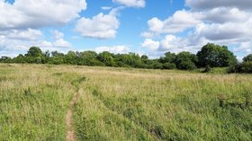 Field at Thrislington National Nature Reserve  (© © Copyright Trevor Littlewood (https://www.geograph.org.uk/profile/39198) and licensed for reuse (https://www.geograph.org.uk/reuse.php?id=5500178) under this Creative Commons Licence (https://creativecommons.org/licenses/by-sa/2.0/).)