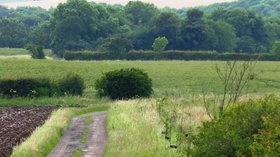 Thorpe Bulmer Dene near the caravan site (© © Copyright Graham Scarborough (https://www.geograph.org.uk/profile/15311) and licensed for reuse (http://www.geograph.org.uk/reuse.php?id=482822) under this Creative Commons Licence (https://creativecommons.org/licenses/by-sa/2.0/).)