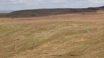 Panorama from White Preston (3: NNWb - Stoneygate End) (© © Copyright Mike Quinn (http://www.geograph.org.uk/profile/12735) and licensed for reuse (http://www.geograph.org.uk/reuse.php?id=1847037)  under this Creative Commons Licence (https://creativecommons.org/licenses/by-sa/2.0/).)