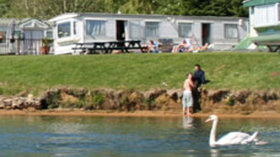 Picture of Three TTT Water Sports, Oxfordshire, Central South England - Swans in the lake next to caravans