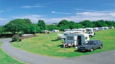 Picture of Shawsmead Caravan Club Site, Ceredigion - Lots of wildlife and woodland around the site