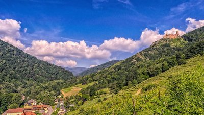 Vosges - local region