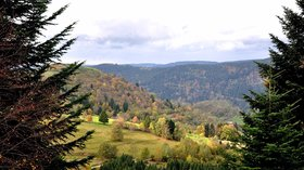 Autumn in Vosges