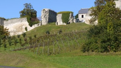 Ramparts_of_Coucy_le_Chateau_l_Auffrique,_Aisne,_France_P1070795 (© By Pline (Own work) [GFDL (http://www.gnu.org/copyleft/fdl.html) or CC BY-SA 3.0 (http://creativecommons.org/licenses/by-sa/3.0)], via Wikimedia Commons (GFNL copy: https://en.wikipedia.org/wiki/GNU_Free_Documentation_License, original photo: https://upload.wikimedia.org/wikipedia/commons/5/5b/Ramparts_of_Coucy_le_Chateau_l_Auffrique%2C_Aisne%2C_France_P1070795.JPG))