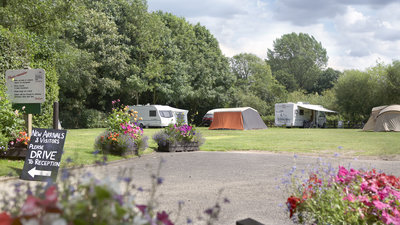 Picture of Norwich Camping and Caravanning Site, Norfolk, East England