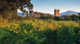 Canet-en-Roussillon - Vignes château clocher (© By Photographe anonyme pour Ville de Canet-en-Roussillon (Own work) [CC BY-SA 4.0 (http://creativecommons.org/licenses/by-sa/4.0)], via Wikimedia Commons (original photo: https://commons.wikimedia.org/wiki/File:Canet-en-Roussillon_-_Vignes_ch%C3%A2teau_clocher.jpg))