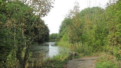 Barnsley Canal near the Dearne Valley Park  (© © Copyright John Slater (https://www.geograph.org.uk/profile/71339) and licensed for reuse (http://www.geograph.org.uk/reuse.php?id=3690004) under this Creative Commons Licence (https://creativecommons.org/licenses/by-sa/2.0/).)