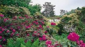 Picture of Normanhurst Court Caravan Club Site, East Sussex