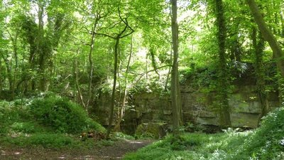 Former stone quarry in Lowther Wood, Pickering (© © Copyright David Smith (https://www.geograph.org.uk/profile/708) and licensed for reuse (http://www.geograph.org.uk/reuse.php?id=4577919) under this Creative Commons Licence (https://creativecommons.org/licenses/by-sa/2.0/).)