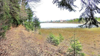 Malpas Lake (© By Espirat (Own work) [CC BY-SA 4.0 (https://creativecommons.org/licenses/by-sa/4.0)], via Wikimedia Commons (original photo: https://commons.wikimedia.org/wiki/File:Malpas._Le_lac,_vu_du_sentier_Est._2016-04-04.JPG))
