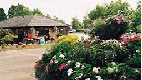 Picture of Alderstead Heath Caravan Club Site, Surrey