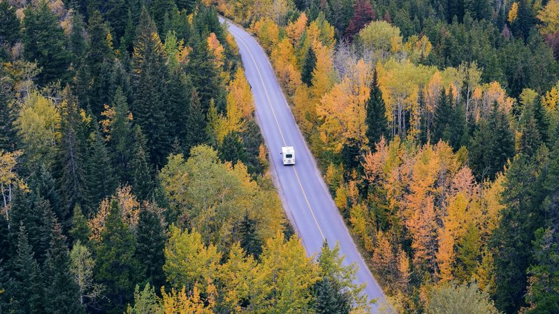 camper-car-fir-trees-24698