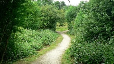 Footpath, Quarry Moor nature reserve, Ripon  (© © Copyright Rich Tea (https://www.geograph.org.uk/profile/4180) and licensed for reuse (http://www.geograph.org.uk/reuse.php?id=199841) under this Creative Commons Licence (https://creativecommons.org/licenses/by-sa/2.0/).)