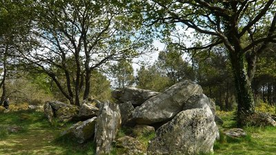 Dolmen du Riholo, Herbignac (© By Poulpy (Own work) [CC BY-SA 3.0 (http://creativecommons.org/licenses/by-sa/3.0)], via Wikimedia Commons)