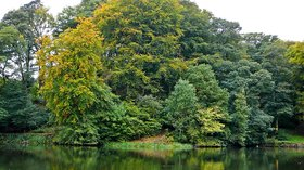 Chellow Dene, Bradford (© By Flickr user:Tim Green aka ayouch (https://www.flickr.com/photos/atoach/5044501183/) [CC BY 2.0  (https://creativecommons.org/licenses/by/2.0)], via Wikimedia Commons (original photo: https://commons.wikimedia.org/wiki/File:Chellow_Dene,_Bradford_(2nd_October_2010).jpg))