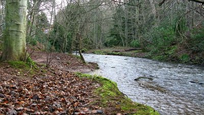 Gifford Water, Carter's Haugh, Gifford near the caravan site (© © Copyright Lisa Jarvis (https://www.geograph.org.uk/profile/5309) and licensed for reuse (http://www.geograph.org.uk/reuse.php?id=318574) under this Creative Commons Licence (https://creativecommons.org/licenses/by-sa/2.0/).)