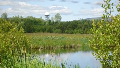 Cumbernauld, Broadwood Loch, nature reserve near the caravan site (© © Copyright Robert Murray (https://www.geograph.org.uk/profile/10850) and licensed for reuse (http://www.geograph.org.uk/reuse.php?id=2524567) under this Creative Commons Licence (https://creativecommons.org/licenses/by-sa/2.0/).)