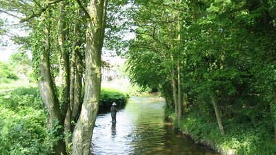 Fly Fishing in Pickering Beck near the caravan site (© © Copyright Phil Catterall (https://www.geograph.org.uk/profile/5995) and licensed for reuse (http://www.geograph.org.uk/reuse.php?id=183152) under this Creative Commons Licence (https://creativecommons.org/licenses/by-sa/2.0/).)