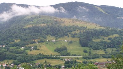 Vosges Misson Didier (© By Didier Misson (Own work) [CC BY-SA 2.5 (http://creativecommons.org/licenses/by-sa/2.5)], via Wikimedia Commons)