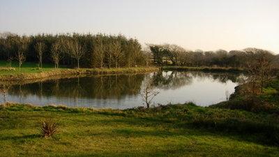 Ginger Hill Large Pond