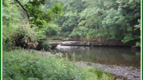 Picture of Cragside Caravan Park, Durham