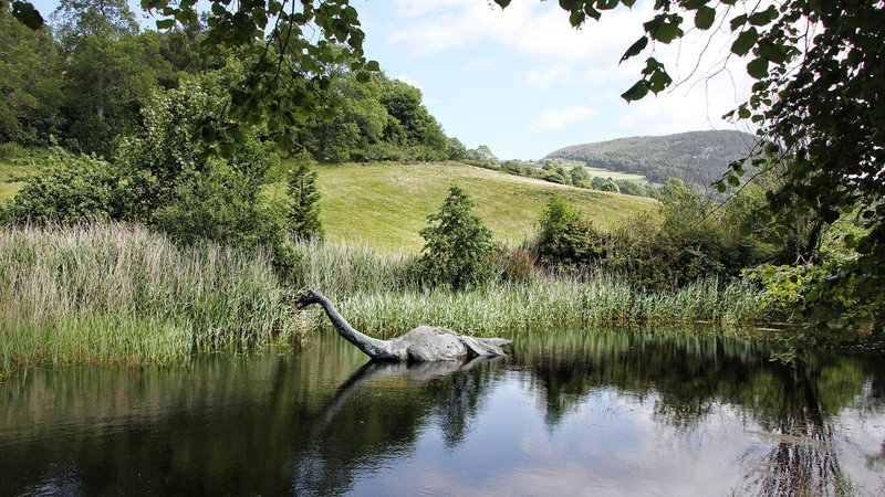 Image of the Loch Ness Monster - <i>Could this be Nessie? Probably not</i>