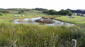 Eco pond near Louisburgh  (© © Copyright Oliver Dixon (https://www.geograph.ie/profile/3462) and licensed for reuse (http://www.geograph.ie/reuse.php?id=1394317) under this Creative Commons Licence (https://creativecommons.org/licenses/by-sa/2.0/).)