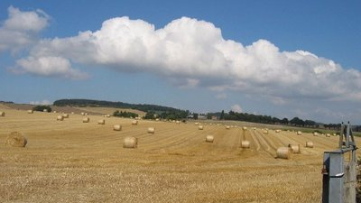 Harvest scene on the Kinross, Fife border  close to the caravan park (© © Copyright Brian D Osborne (original photo: http://www.geograph.org.uk/profile/2117) and licensed for reuse (http://www.geograph.org.uk/reuse.php?id=49838) under this Creative Commons Licence (https://creativecommons.org/licenses/by-sa/2.0/.)