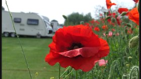 Photo of Lucksall Caravan & Camping Park in the background