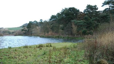 Scarborough Mere (© Chris Yeates [CC BY-SA 2.0 (https://creativecommons.org/licenses/by-sa/2.0)], via Wikimedia Commons (oriignal photo: https://commons.wikimedia.org/wiki/File:Scarborough_Mere.jpg))