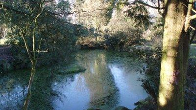 Devonshire Road Rock Gardens - panorama (© jolmartyn [CC BY-SA 3.0 (https://creativecommons.org/licenses/by-sa/3.0)], via Wikimedia Commons (original photo: https://commons.wikimedia.org/wiki/File:Devonshire_Road_Rock_Gardens_-_panoramio_(6).jpg))