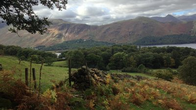 Borrowdale,_UK_-_panoramio_(29)