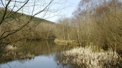 Pexton Pond  (© © Copyright Doreen Laycock (https://www.geograph.org.uk/profile/35216) and licensed for reuse (http://www.geograph.org.uk/reuse.php?id=1208883) under this Creative Commons Licence (https://creativecommons.org/licenses/by-sa/2.0/).)