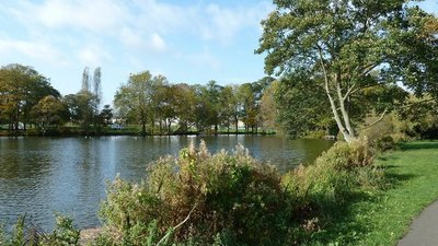 Pittville Park Lake  (© © Copyright Mary and Angus Hogg (https://www.geograph.org.uk/profile/7257) and licensed for reuse (https://www.geograph.org.uk/reuse.php?id=5575269) under this Creative Commons Licence (https://creativecommons.org/licenses/by-sa/2.0/).)