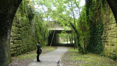 The light at the end of the tunnel  - The light at the end of one of the Ashbourne's tunnel (© © Copyright cris sloan (https://www.geograph.org.uk/profile/8366) and licensed for reuse (http://www.geograph.org.uk/reuse.php?id=567911) under this Creative Commons Licence (https://creativecommons.org/licenses/by-sa/2.0/).)