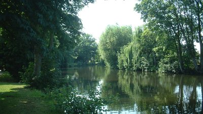 The Wensum under trees (© By No machine-readable author provided. Angmering assumed (based on copyright claims). [Public domain], via Wikimedia Commons)