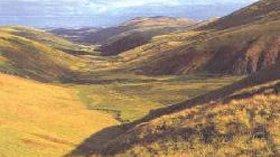 Picture of Swinhoe Links Caravan Park, Northumberland