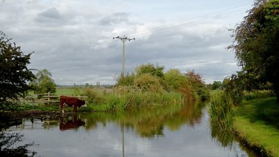 The Ashby Canal north of Snarestone in Leicestershire  (© © Copyright Roger Kidd (https://www.geograph.org.uk/profile/12192) and licensed for reuse (https://www.geograph.org.uk/reuse.php?id=5311357) under this Creative Commons Licence (https://creativecommons.org/licenses/by-sa/2.0/).)