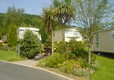 Picture of Cenarth Falls Holiday Park, Ceredigion, Wales