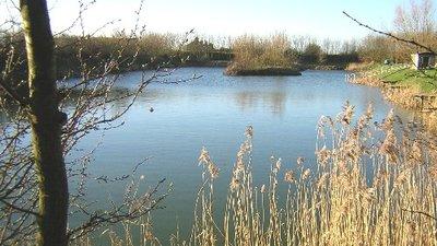Picture of Virginia Lake & Caravan Park, Cambridgeshire
