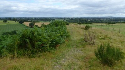 Old Oswestry Hill Fort  (© © Copyright Eirian Evans (https://www.geograph.org.uk/profile/4582) and licensed for reuse (https://www.geograph.org.uk/reuse.php?id=5470006) under this Creative Commons Licence (https://creativecommons.org/licenses/by-sa/2.0/).)